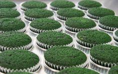 A healthy dessert, you say? How about some Moringa Cupcakes? Grab your healthy Moringa Cupcakes! Sweet cakes that are healthy. Matcha Cookies, Coconut Cookies, Matcha Chia Pudding, Moringa Recipes, Yogurt, Moringa Powder, Favorite Cookie Recipe, Cake Shapes, Banana