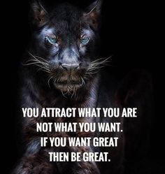 What do you attract?  Tag someone  #future #dreams #goals #motivation #inspiration #success #hustle #grind #power #strength #instapic #instagood #business #positive #attitude