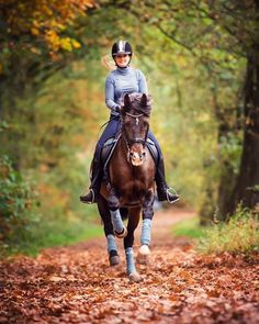 #Friyay #inspo from @sharenaluijksdressage wearing new Aquamarine #Eskadron and giving us all the #fall vibes
