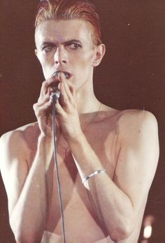 Google Image Result for http://images4.fanpop.com/image/photos/19400000/David-Bowie-david-bowie-19443383-800-1174.jpg
