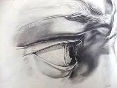 el david de miguel angel - detalle ojo derecho - dibujo a lápiz