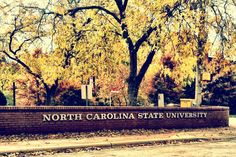 Our hearts ever hold you, NC State, in the folds of our love and pride.