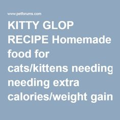 KITTY GLOP RECIPE Homemade food for cats/kittens needing extra calories/weight gain