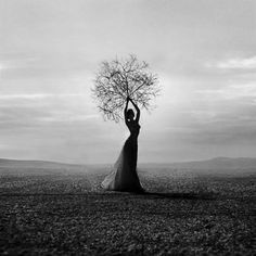 she did try, but her roots grew towards the sky, this is why she had to leave