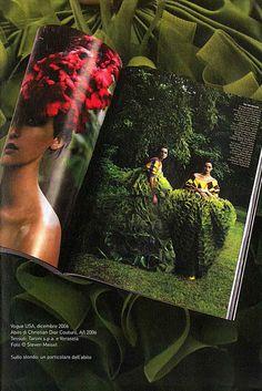 """Giardini di Seta"" : Book of the Exhibition ""Giardini di Seta"" p. 45. Vogue USA, December 2006. Christian Dior Couture, AW 2006. Fabrics : Taroni and Veraseta."