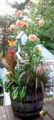 Perennial Passion: Whiskey Barrel  'Peaches & Cream' dahlias...love the birdhouse in with the flowers