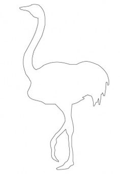 ostrich outline