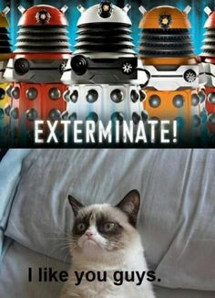 Darleks meet Grumpy Cat | Crazy as a Bag of Hammers