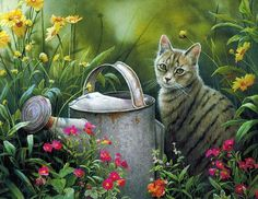 Susan Bourdet art. Leave a comment to let KittyCommotion.com know you'd like to pin your favorite cat art on this board