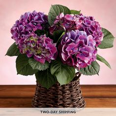 Image from http://images.harryanddavid.com/is/image/HarryandDavid/asiHighRez/Ships2day_feat_pre/1540_29024-mothers-day-hydrangea-plant-gift.jpg.