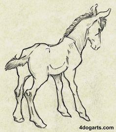 colt sketch drawing horse how to draw tutorial art illustration comic Jessica Magnus Rockeman 4 Dog Arts images free