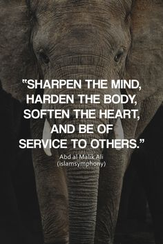 """islamsymphony: """"Sharpen the mind, harden the body, soften the heart, and be of service to others. -Abd al Malik Ali """""""