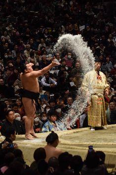 Sumo Wrestler, Sports Today, Maneki Neko, Kendo, Aikido, Fujoshi, Home And Away, Karate, Martial Arts