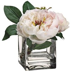 Pearl and Cerise Grand Peony Silk Flowers in Glass Vase (1,440 MXN) ❤ liked on Polyvore featuring home, home decor, floral decor, flowers, plants, fillers, decor, backgrounds, home accessories and fake peony arrangement