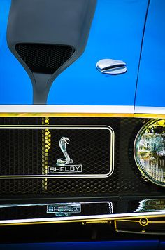 Mustang Images by Jill Reger - Images of Mustangs - 1970 Ford Mustang Gt350 Replica Grille Emblem