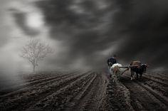 Nice farmer I