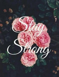 Image shared by Find images and videos about pink, makeup and girly on We Heart It - the app to get lost in what you love. Pink Wallpaper Iphone, Iphone Wallpapers, It Gets Better, Image Sharing, Follow Me, Find Image, Girly, Rose, Flowers