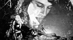 PETER TSCHERKASSKY 'THE EXQUISITE CORPUS' (2015)