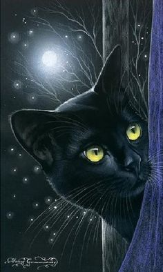 superbes illustr. de Irina Garmashova