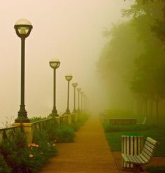 Foggy Path, London, England