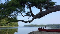Kejimkujik National Park has many beaches, including this one. @marylouihbc  sent us this photo.