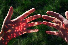 Lit bloodcells (bio luminescence)