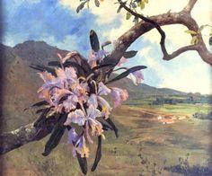 Flores de Mayo y paisaje