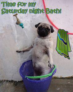 Time for my Saturday night Bath! cg