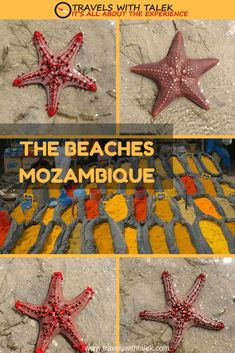 The world should start hearing more about Mozambiques charm and attractions in the years to come especially the sandy, pristine beaches of Mozambique. Africa Destinations, Travel Destinations Beach, Beach Travel, Vacation Travel, Travel Goals, Budget Travel, Destin Beach, Beach Trip, Beach Bum