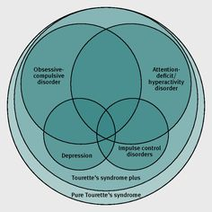 Schematic representation of the behavioural spectrum in Tourette's syndrome: the size of each area is proportional to the estimated prevalence of the symptoms; the background colour intensity is proportional to the complexity of the clinical presentation