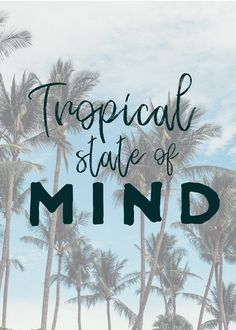 Tropical State of Mind quotes, beach quotes, sunset quotes, sunset sayings, beach saying, sunset beach quotes, surfer quote, surfer saying, beach quotes inspirational, ocean saying, ocean quote, summer quote, summer saying, beach phrase, surf phrase, palm tree quotes, sun quote, sunshine quote, Tamarindo, Tamarindo Costa Rica, Costa Rica beach, Costa Rica playa, Costa Rica Tamarindo