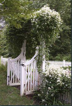 Covered arch. So, pretty!