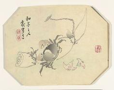 Krab_en_lotusplant-Rijksmuseum_RP-P-1961-132.jpeg (2500×1973)