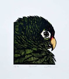Linocut Parrot handpulled and handcolored Original by DCutter, $55.00