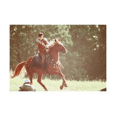 King Edmund of Narnia Edmond Narnia, Skandar Keynes, Narnia Cast, Edmund Pevensie, Film Trilogies, Prince Caspian, Princess Aesthetic, Chronicles Of Narnia, Draco Malfoy