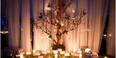 Árvore Francesa em decoração de casamento.