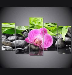 5 Pieces Multi Panel Modern Home Decor Framed Pink Orchid Zen Spa Wall Canvas Art   Octo Treasures