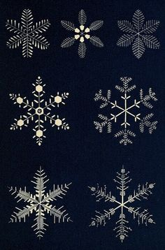 snowflake-11 by Public Domain Review, via Flickr