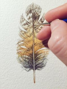 This is an original watercolour study of an owl feather. Theres so much attention to detail in this little feather! Its almost like you can reach out and pluck the feather off of the page. Painted on Arches watercolour paper Portrait/Vertical orientation Arches Watercolor Paper, Watercolor Feather, Feather Painting, Watercolor And Ink, Watercolor Paintings, Original Paintings, Watercolours, Owl Feather, Bird Feathers
