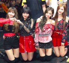 Japan #BLACKPINK #Lisa #Jennie #Rose #Jisoo