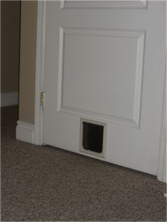 Indoor Cat Door