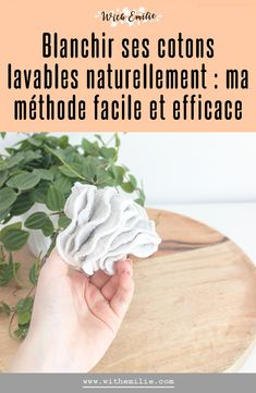 French Lifestyle, Lifestyle Blog, Green Lifestyle, Permaculture, Zero Waste Home, Fee Du Logis, Diy Cleaning Products, Bio, Eco Friendly