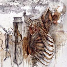 Nunzio Paci, Relic. Anatomy Drawing, Anatomy Art, Nunzio Paci, Medical Illustration, Illustration Artists, Composition Art, Different Art Styles, Medical Art, A Level Art