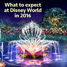 There are a lot of exciting changes coming to Disney World in 2016, including a new nighttime show, all new attractions, completely redone popular attractions, and lots of construction. I have details on all of that, plus a quick tip of the day...