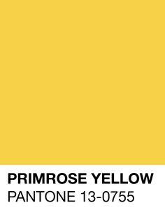 Primrose Yellow Pantone Spring/Summer S/S 2017