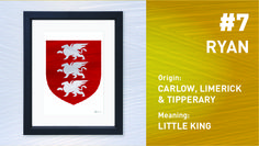 The Top Ten Most Popular Irish Surnames from Painted Clans. Hand painted Irish coat of arms with a modern twist. Irish Coat Of Arms, Little King, Irish Roots, Irish Men, Surnames, Most Popular, Top Ten, Anniversary Gifts, Hand Painted