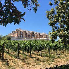 Domaine Carneros. #wine