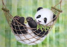HAMMOCK PANDA BY KAYOMI HARAI VISIT OUR WEBSITE www.lailas.com for more great images