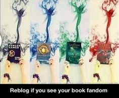 Mine are Harry Potter and Percy Jackson!!