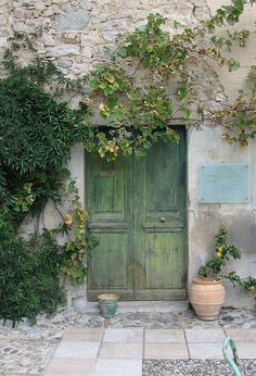 great door and patio stone design